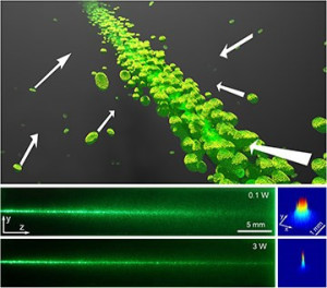 Top: Illustration of bacteria drawn inward and forward by a light beam, creating an effective waveguide that helps compensate for the beam's natural diffraction (see online video). Bottom left: Side view of a laser beam propagating in marine Synechococcus cells suspended in seawater. At low power, the beam shows linear diffraction/scattering; at high power, it experiences nonlinear self-trapping. Bottom right: Corresponding 3-D plots of the beam profiles after 4 cm of propagation, captured by a CCD camera.